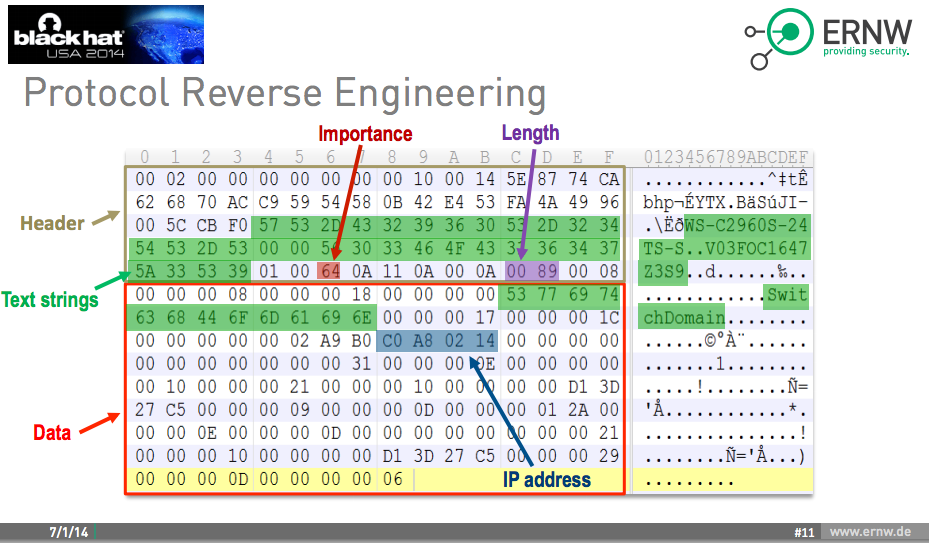 Protocol Reverse-Engineering